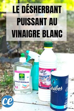 Vicks Vaporub, Weed Killer, White Vinegar, Natural Home Remedies, Weeding, Permaculture, Horticulture, Spray Bottle, Compost
