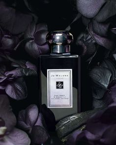 Dark Amber and Ginger Lily by Jo Malone is an oriental woody fragrance for women, a cologne for women presented in It includes aromas of black car. Perfume Parfum, Perfume And Cologne, Best Perfume, Fragrance Parfum, Perfume Bottles, Patchouli Perfume, Shooting Pose, Ginger Lily, Essential Oils