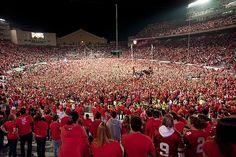 Scott Van Pelt reacts to Wisconsin Badgers win over Ohio State Ohio State Game, Ohio State Football, Ohio State Buckeyes, Osu Game, Camping Aesthetic, Summer Aesthetic, Travel Aesthetic, Utah Utes, University Of Wisconsin