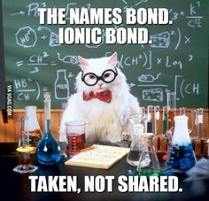 A collection of the Chemistry Cat meme. These are the top Chemistry Cat meme jokes. View and rate your favorite memes of Chemistry Cat. Chemistry Cat, Chemistry Pick Up Lines, Nerdy Pick Up Lines, Math Pick Up Lines, Organic Chemistry Humor, Chemistry Projects, Teaching Chemistry, Humor Nerd, Science Jokes