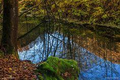 Pond reflection, Valsesia