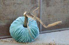 win a set of six beautiful velvet pumpkins | perfect fall decor!