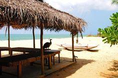 Khomba House: luxury holiday villa in Kalpitiya , Sri Lanka. 2 rooms. Sleeps 8