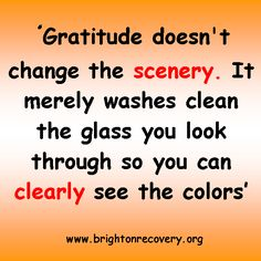 Gratitude doesnt change the scenery...
