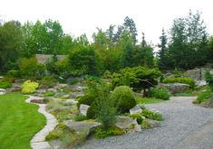 "Alpine rock garden  Basic idea for developing a ""DOG YARD!!"""