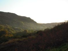 in the mountain side of wales