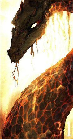 Fire Dragon <3 dragons