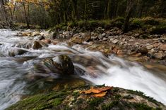 Fall is here for sure :-) Fall Is Here, Norway, Waterfall, Outdoor, Outdoors, Waterfalls, Outdoor Games, Outdoor Living