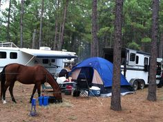 Horse camping - You don't need a fancy LQ to compete in endurance, use what you have