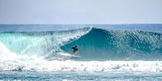Early season specials! South Sumatra – 10 Nights all inclusive Nov 1, 2015 – Feb 28, 2016 $525 USD Sumatra Surf Resort opened in July 2014 and is the newest Surf Resort to open in West Lampung South Sumatra. Good surf, good times, good friends and good memories are what we want you to experience at Sumatra Surf Resort. If you just want to surf and relax with a few cold frothies afterwards that's cool. Do as much or as little as you want to do.
