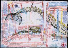 Urban Sketchers: Museum Of Natural History