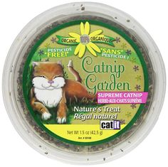 Catit Catnip Garden, Ounces ** To view further for this item, visit the image link. (This is an affiliate link and I receive a commission for the sales) Nursing Supplies, Cat Id Tags, Cat Training Pads, Catnip Toys, Cat Shedding, Cat Fleas, Cute Eyes, Cat Accessories, Cat Health