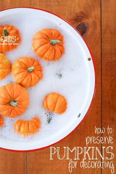 How to Preserve Pumpkins for Fall Decorating - You can get an additional 3-4 weeks out of your pumpkins by properly cleaning them!