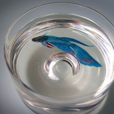 Amazing fish painted in layers on resin.