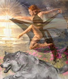 Fantasy Wolf, Anime Fantasy, Wolves And Women, Wolf Painting, Wolf Quotes, Wolf Spirit, Pretty Wallpapers, Gray Wolf, Angels