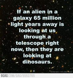 We're Dinosaurs
