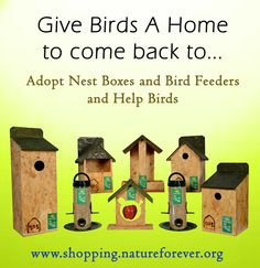 Give the birdies a home to come back too. Adopt these nest boxes and feeders and give them a place to live in. Save Environment, Nesting Boxes, Bird Feeders, Comebacks, Adoption, Live, Outdoor Decor, Animals, Animaux