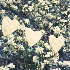 Fotografia ślubna Krakow ,www.pictreestudio.com #sesjanarzeczenska #fotografiaslubna #pictreestudio #weddingphotography  #sesjaslubna #pannamloda #slub #fotografslubny #sesjazdjeciowa #plenerslubny #sukniaslubna #bukietslubny #wesele #paramloda @pictreestudio #fotobudka #wesele