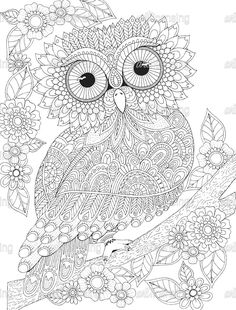 Owl Coloring Pages Animal Coloring Book Pages For Adults Instant