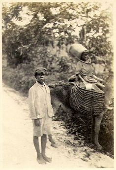 Jamaica 1927. Children with loaded donkey on a road in Jamaica photographed by Commander N C Moore of HMS Renown on 1927 Royal Cruise.     Courtesy: Brodnax Moore. Gosport (UK).