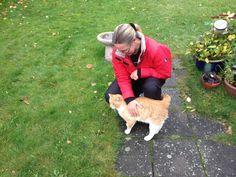 Garfield på besøg