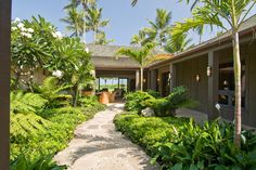 simple tropical gardens - Google Search