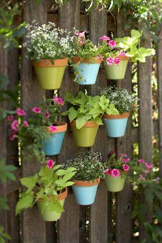 Prepara un jardín vertical en el jardín...