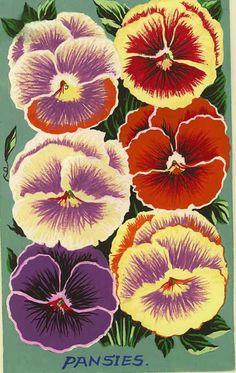 vintage purple pansies