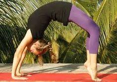 pose library  the kaivalya yoga method  bow pose yoga