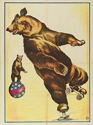 картинка медведь жонглер занимается лечением больных
