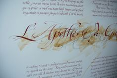 Calligraphie latine d'un texte de Frédéric Dard sur le vin.