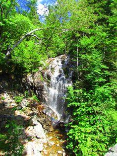 Hadlock Waterfall by Liz Dow