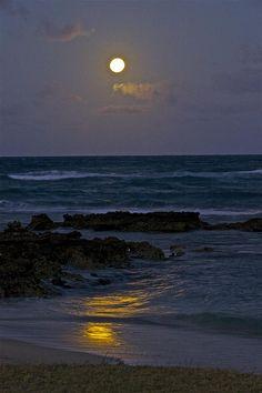 Moon Over The Beach 2 Canvas Print / Canvas Art by Eddie Freeman Beautiful Moon, Beautiful Beaches, Beautiful World, Beautiful Images, Ocean At Night, Beach At Night, Night Aesthetic, Beach Aesthetic, Nature Aesthetic