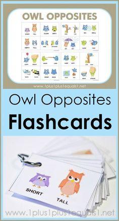 Free Owl Opposites Flashcards