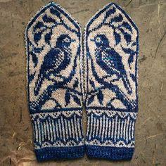 Ravelry: ericamay's songbird mittens
