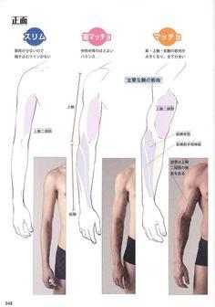 Arte Com Grey's Anatomy, Arm Anatomy, Muscle Anatomy, Anatomy Study, Body Anatomy, Anatomy Art, Body Reference Drawing, Guy Drawing, Anatomy Reference