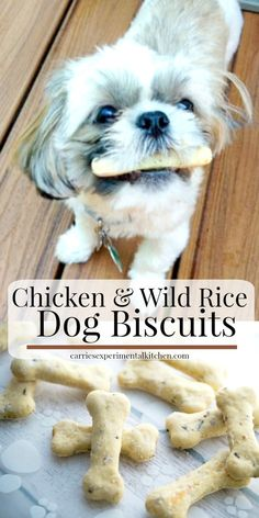 and Wild Rice Dog Biscuits Dogs are part of the family too, so why not treat them to these special homemade Chicken & Wild Rice Dog Biscuits.Dogs are part of the family too, so why not treat them to these special homemade Chicken & Wild Rice Dog Biscuits. Puppy Treats, Diy Dog Treats, Homemade Dog Treats, Homemade Dog Biscuits, Healthy Dog Treats, Chicken For Dogs, Chicken And Wild Rice, Chicken Rice, Dog Cookies