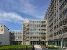 25 km de bambous couvrent un bâtiment de bureaux à Toulouse