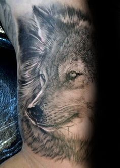 Gentleman With Unique Shaded Realistic Inner Arm Bicep Wolf Tattoo
