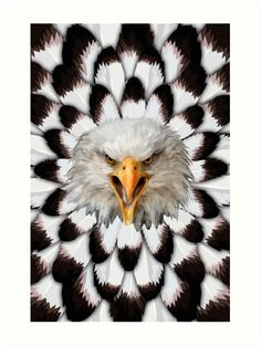 Eagle and feather Pattern Art Prints Feather Pattern, Pattern Art, Canvas Art, Canvas Prints, Art Prints, Bald Eagle, Eagle Bird, Thing 1, Eagles