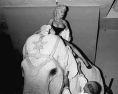 Marilyn made a triumphant entrance atop the pink elephant.