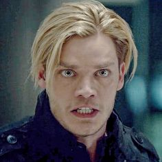 When they said they're canceling Shadowhunters. Alec And Jace, Clary And Jace, Jace Wayland, Christian Ozera, Clary Fray, Malec, Vampire Film, Shadowhunters Season 3, Dominic Sherwood