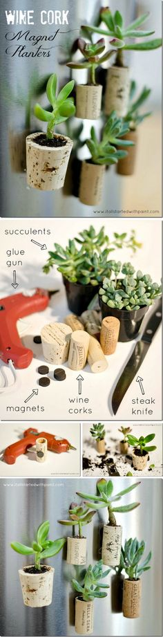 Wine Cork Magnet Planters. +24 other ideas