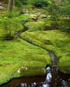 Seattle Urban Landscape: Bloedel Reserve: The Moss Garden (and In Garden Design: A World Apart, Susan Heeger wrote of the Moss Garden at Saiho-ji)