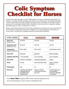 Is your horse showing signs of colic? Use Veterinarian Barb Crabbe's colic checklist to track your horse's symptoms during the initial stages of colic, or until your vet arrives.