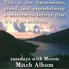 Love Words, Beautiful Words, Tuesdays With Morrie, Mitch Albom, House Of Beauty, Food For Thought, Reflection, Believe, Universe