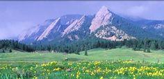 Boulder 70.3 - August 5, 2012.