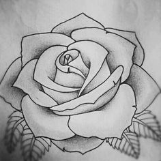 Rose tattoo design sketch