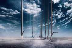 Arise series with glitched trees by Øystein Sture Aspelund