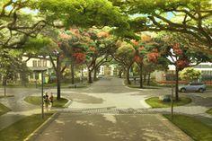 Santierra -- Perfect natural urban refuge